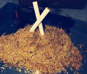 prodam tobak Virginia